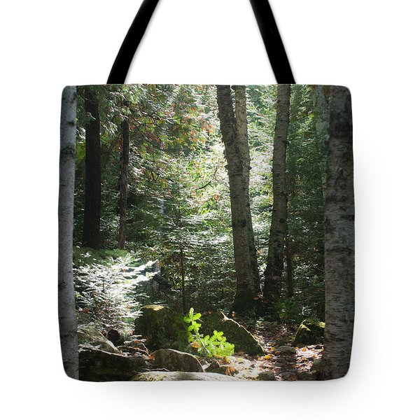 The Living Forest Tote Bag