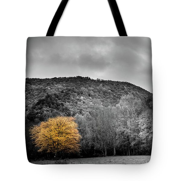 Tote Bag featuring the photograph The Lone Yellow Tree by Greg Mimbs