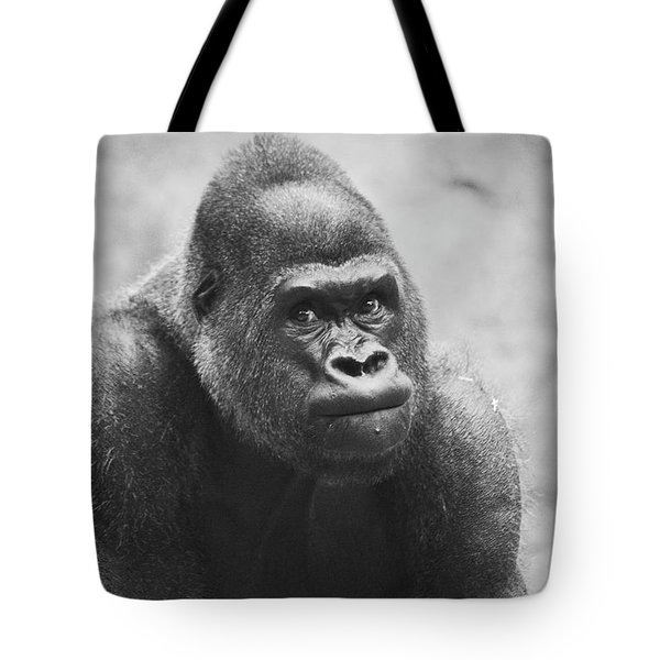 The Look Of A Silver Back  Tote Bag