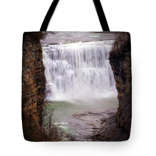 The Middle Falls Tote Bag