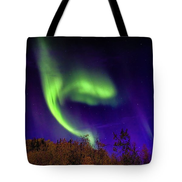 Tote Bag featuring the photograph The Northern Lights Alaska by Michael Rogers