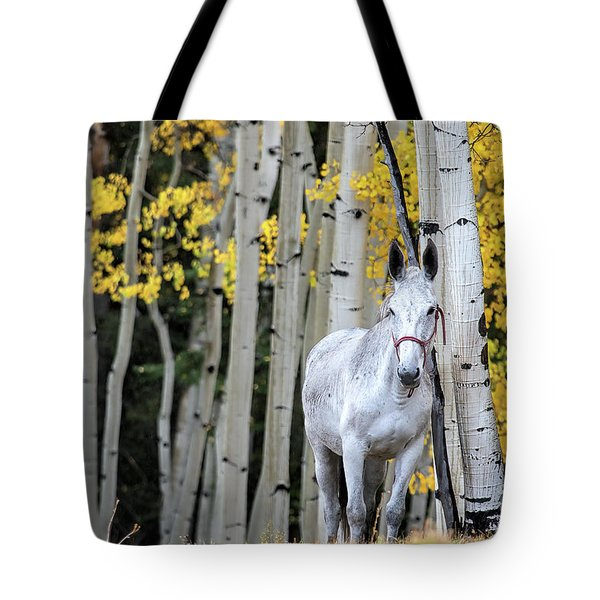 The Old Gray Mule  Tote Bag