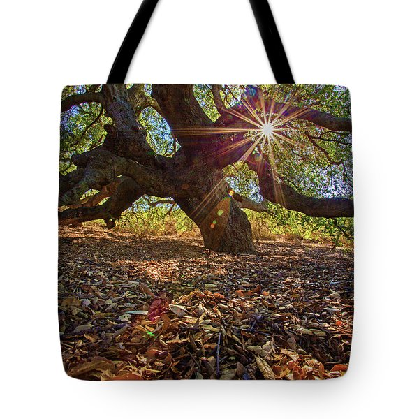 The Old Oak Tote Bag