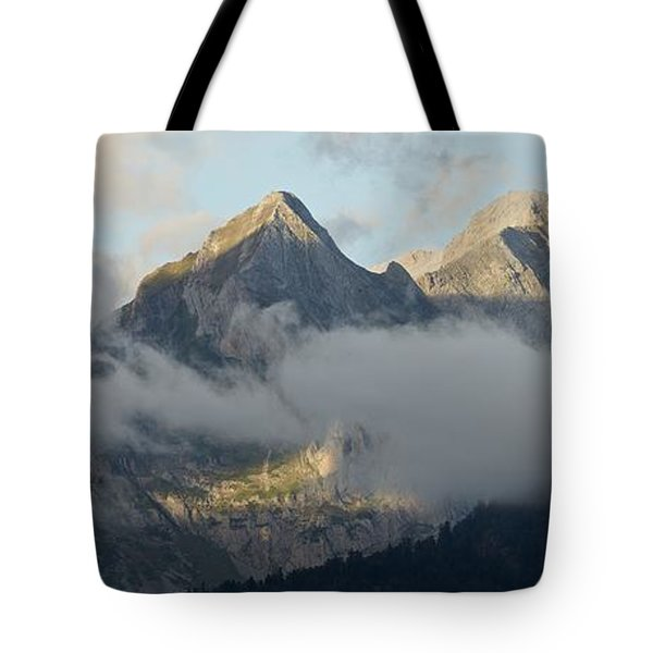 Tote Bag featuring the photograph The Ossau Valley  by Stephen Taylor