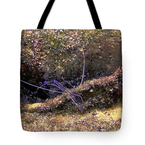 The Pederson Corkscrew Tote Bag