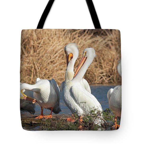 The Pelican Gang Tote Bag