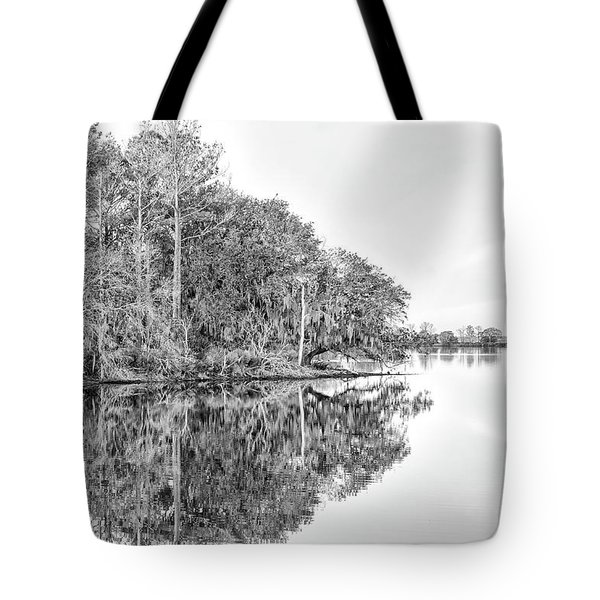 The Point At Coosaw Plantation Tote Bag