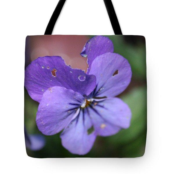 The Raggedy Viola Tote Bag