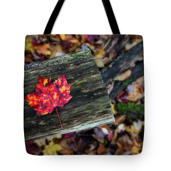 The Reason They Call It Fall Tote Bag