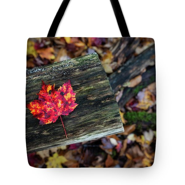 Tote Bag featuring the photograph The Reason They Call It Fall by Brad Wenskoski