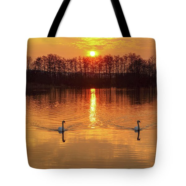 The River Waal Tote Bag
