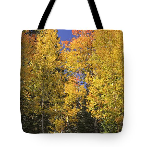 Tote Bag featuring the photograph The Road A Little Less Traveled by Rick Furmanek