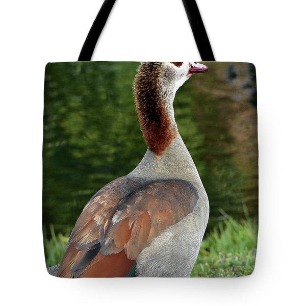 The Sacred Goose Tote Bag
