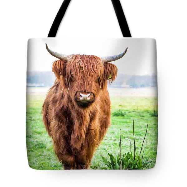 Tote Bag featuring the photograph The Scottish Highlander by Anjo Ten Kate
