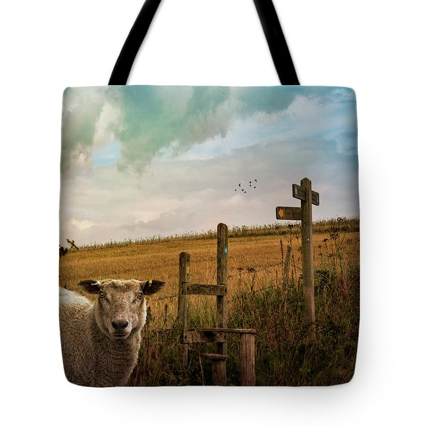 Tote Bag featuring the photograph The Sheep Who Knows Where She's Going by Chris Lord