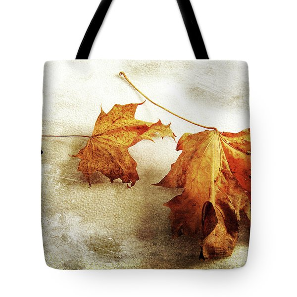 Tote Bag featuring the photograph The Sound Of Autumn by Randi Grace Nilsberg