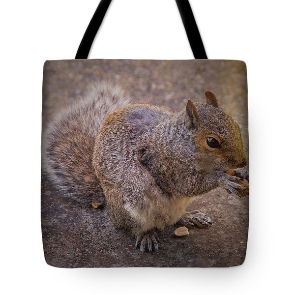 The Squirrel - Cornwall Tote Bag