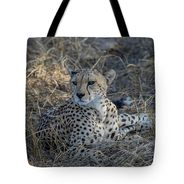 Tote Bag featuring the photograph Cheetah In Repose by Thomas Kallmeyer