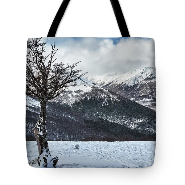 Dry Try On Frozen Mountainous Landscape In The Argentine Patagonia Tote Bag