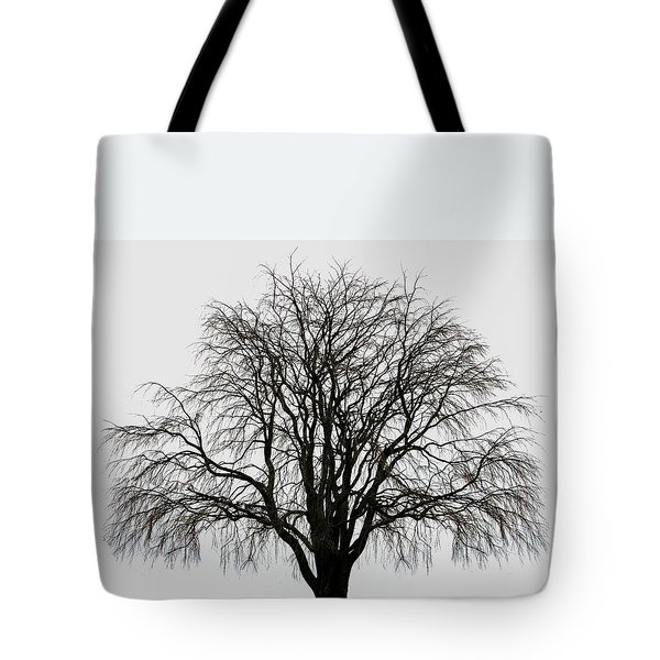 Tote Bag featuring the photograph The Tree By The Side Of The Road by Jim Dollar