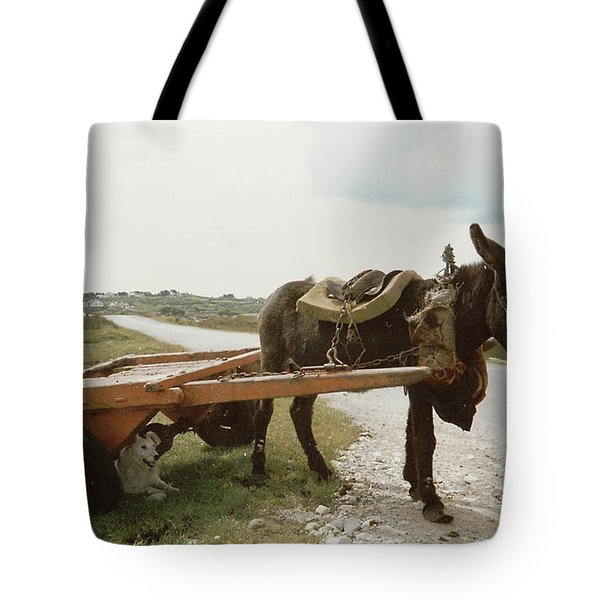 Tote Bag featuring the painting The Turf Donkey by Val Byrne