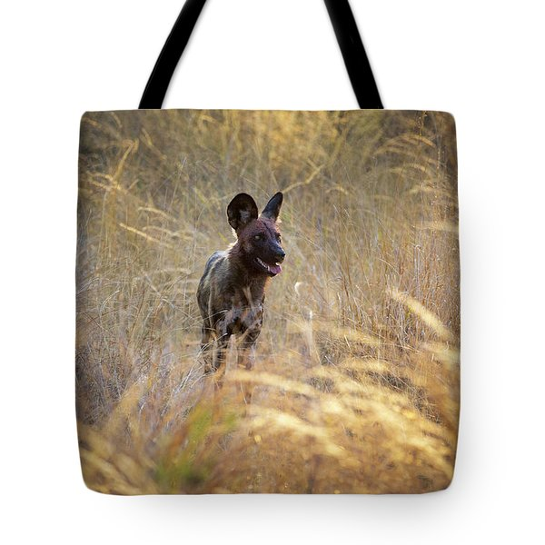 Tote Bag featuring the photograph The Wild Dog Of Africa by John Rodrigues
