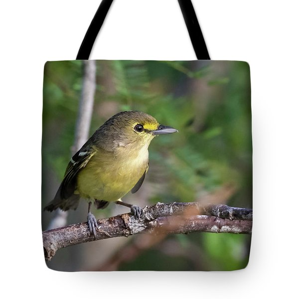 Tote Bag featuring the photograph Thick-billed Vireo by Thomas Kallmeyer