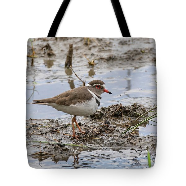 Three-banded Plover Tote Bag