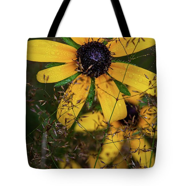 Tote Bag featuring the photograph Through The Meadow Grasses by Dale Kincaid