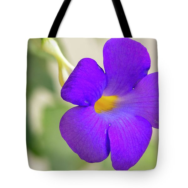 Thunbergia Erecta Bush Clock Vine Tote Bag
