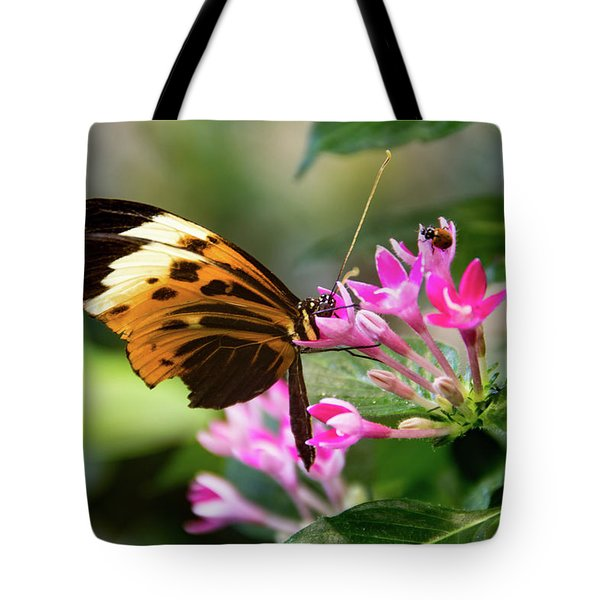 Tiger Longwing Butterfly Drinking Nectar  Tote Bag