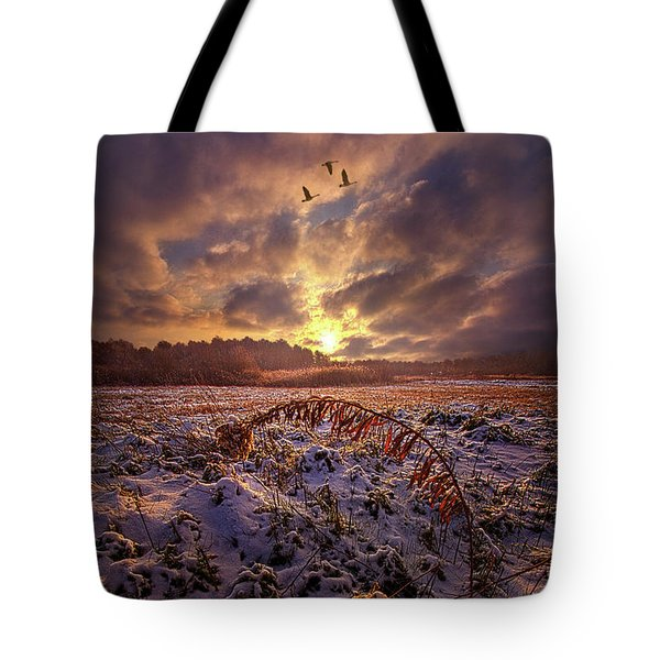 Tote Bag featuring the photograph Times They Changed by Phil Koch