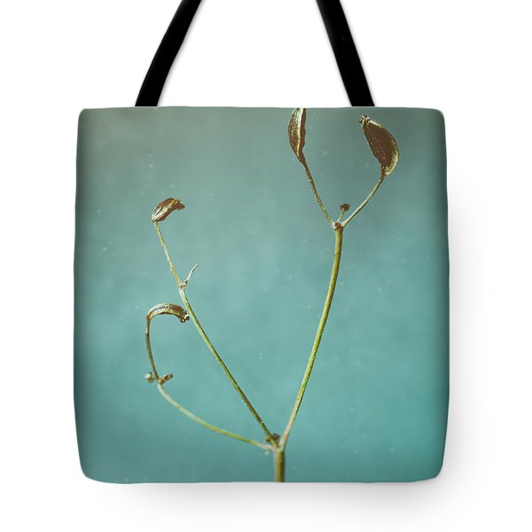 Tiny Seed Pod Tote Bag