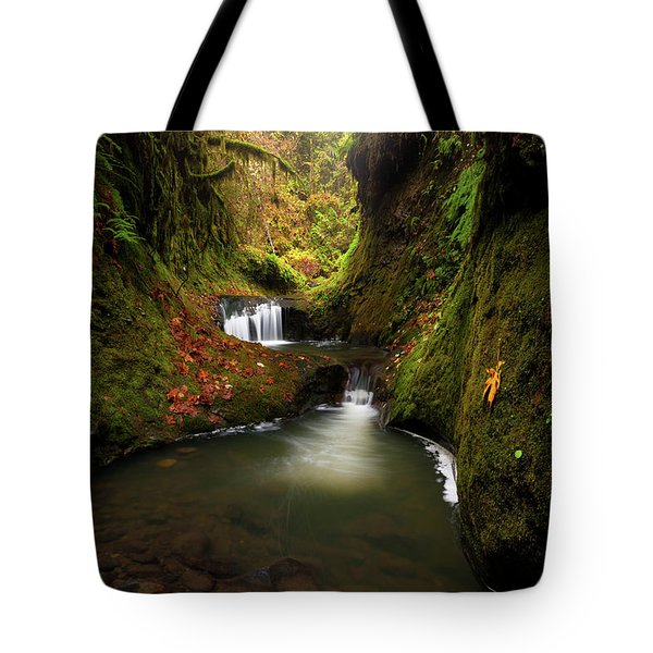 Tire Creek Canyon Tote Bag