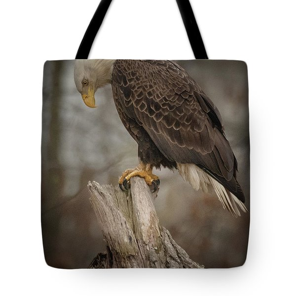 Tired Eagle Dad  Tote Bag