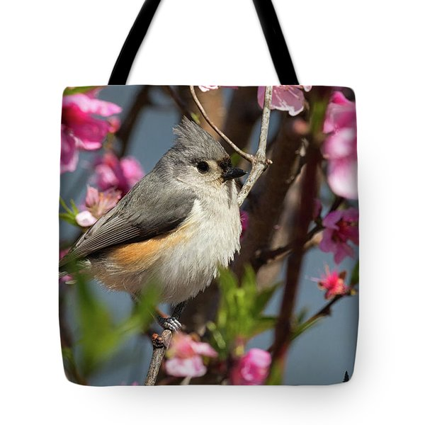 Titmouse And Peach Blossoms Tote Bag