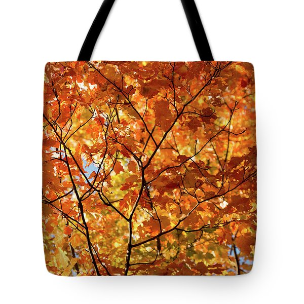 To Be Up In The Trees Tote Bag