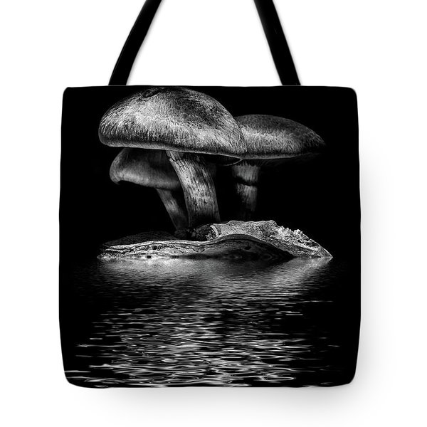 Toadstools On A Toronto Trail Reflection 3 Tote Bag