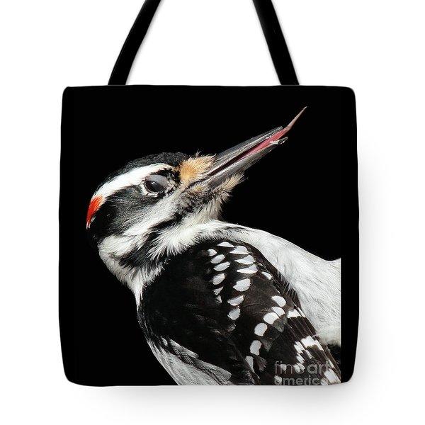 Tongue Of Woodpecker Tote Bag