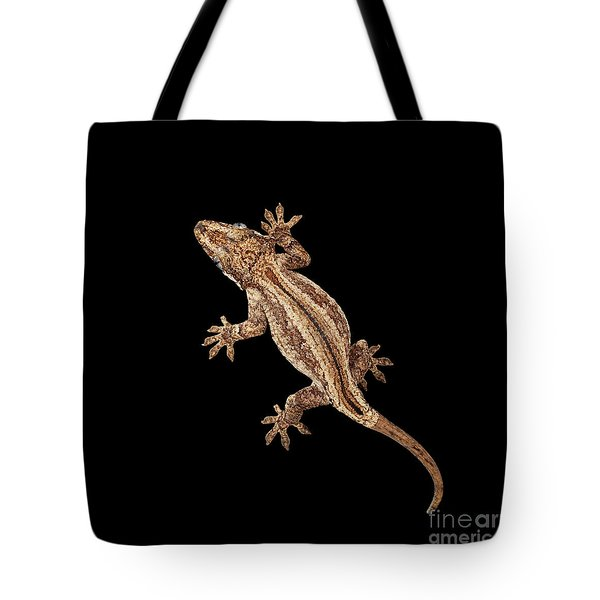 Top View Of Gargoyle Gecko, Rhacodactylus Auriculatus Staring Isolated On Black Background. Native T Tote Bag