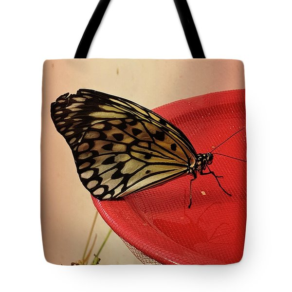 Torn Butterfly Tote Bag