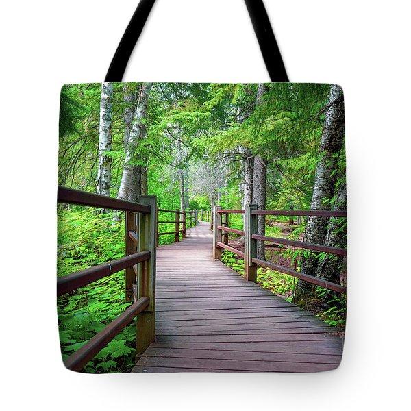 Trail At Gooseberry Falls Tote Bag