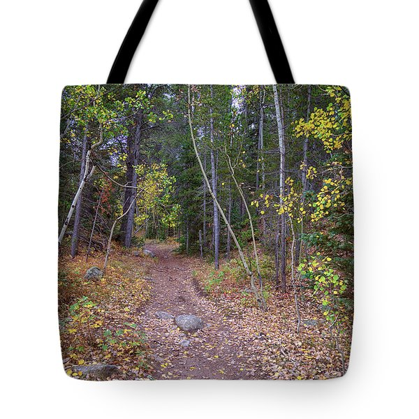 Tote Bag featuring the photograph Trailhead by James BO Insogna