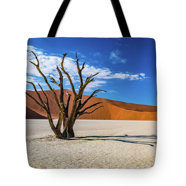 Tree And Shadow In Deadvlei, Namibia Tote Bag