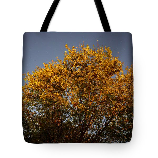 Tree And Stars Wide Tote Bag