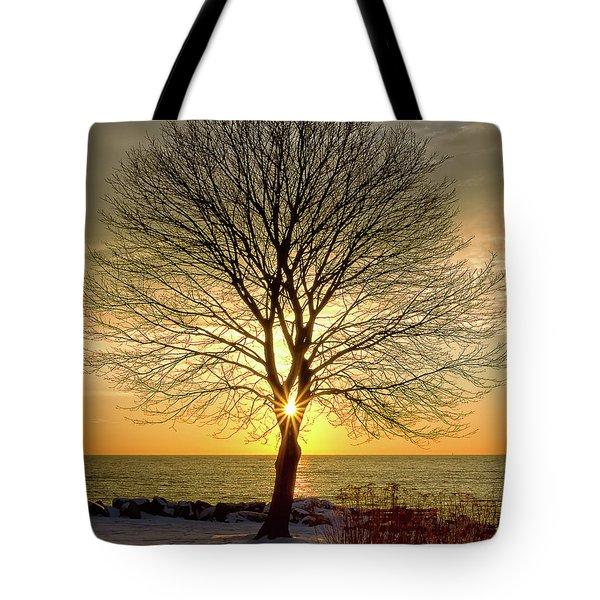 Tree Framed Sunrise New Hampshire Tote Bag
