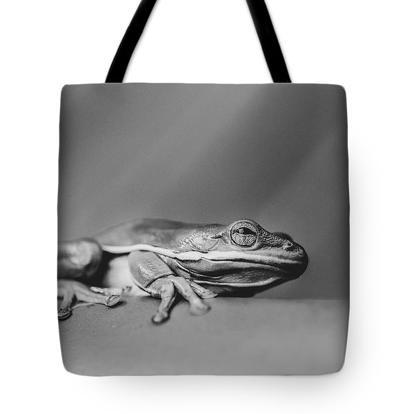 Tote Bag featuring the photograph Tree Frog Bw by Keith Smith