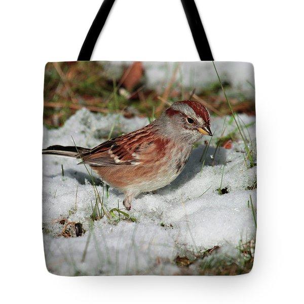 Tree Sparrow In Snow Tote Bag