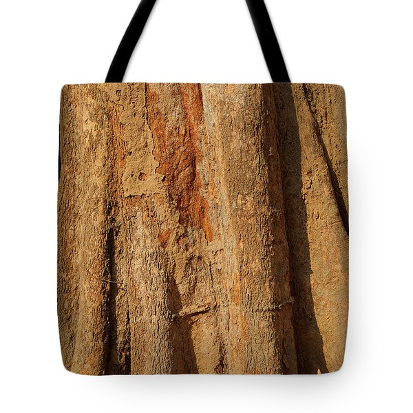 Tree Trunk And Bark Of Chambak Tote Bag