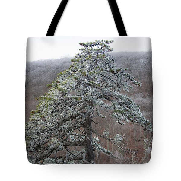 Tree With Hoarfrost Tote Bag